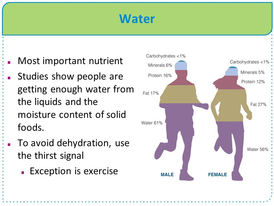 Water Most important nutrient