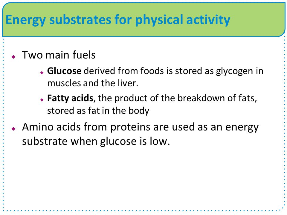 Energy substrates for physical activity