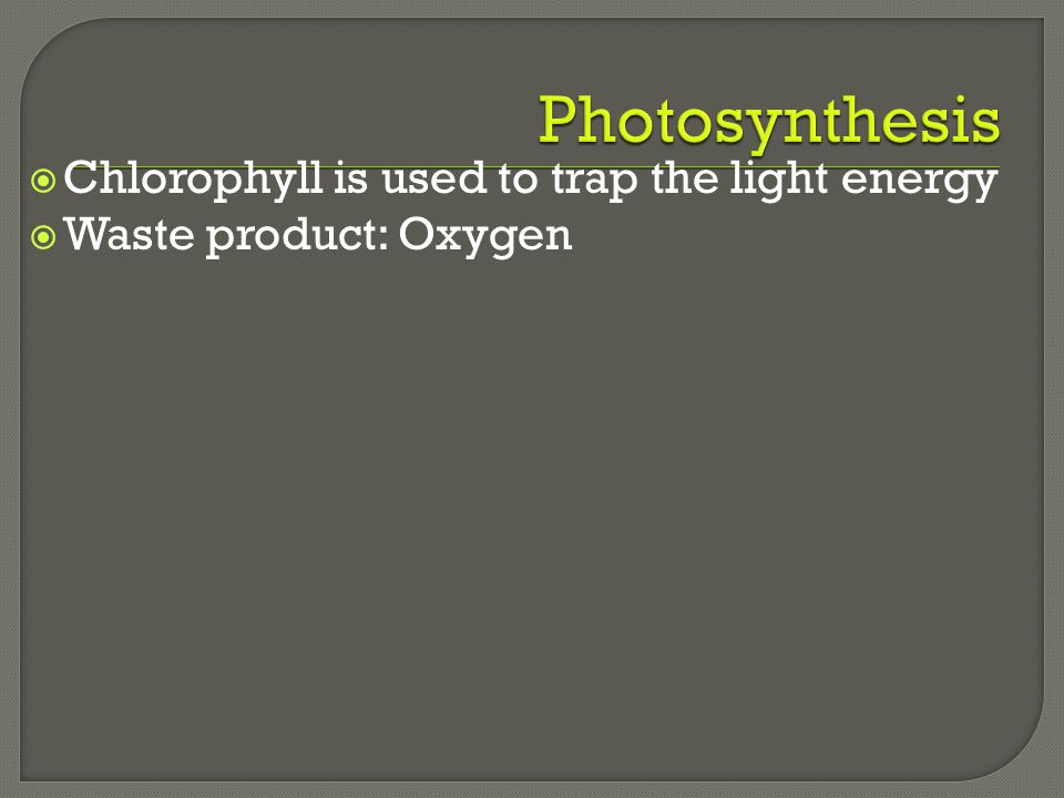 Photosynthesis Chlorophyll is used to trap the light energy