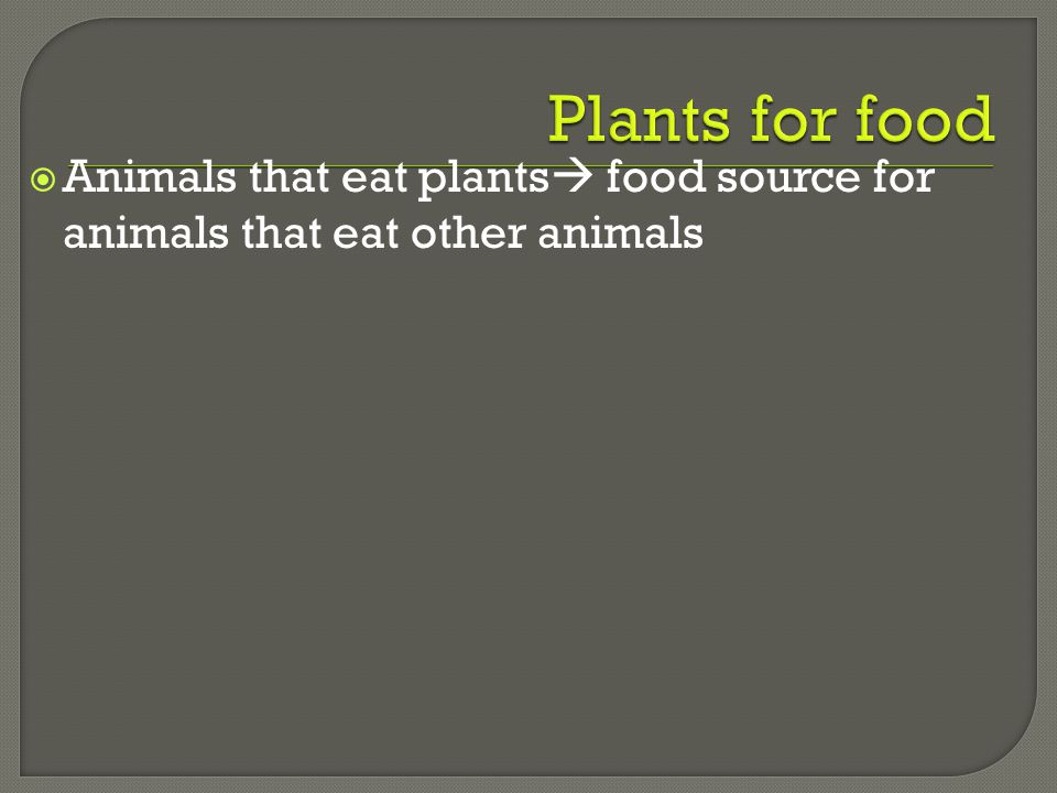 Plants for food Animals that eat plants food source for animals that eat other animals