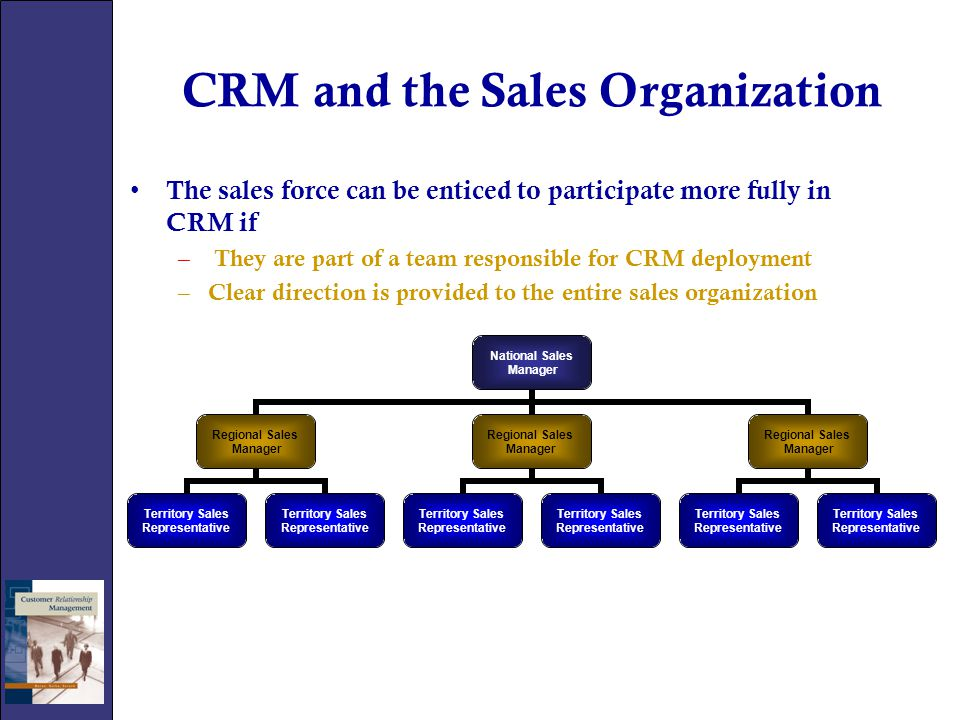 CRM and the Sales Organization