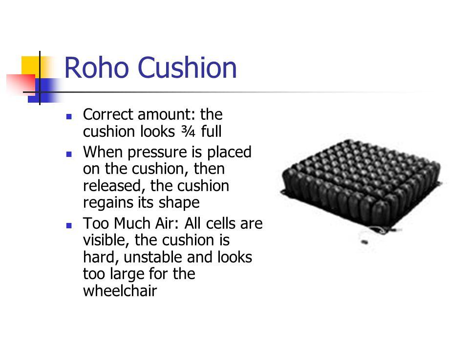 Roho Cushion Correct amount: the cushion looks ¾ full
