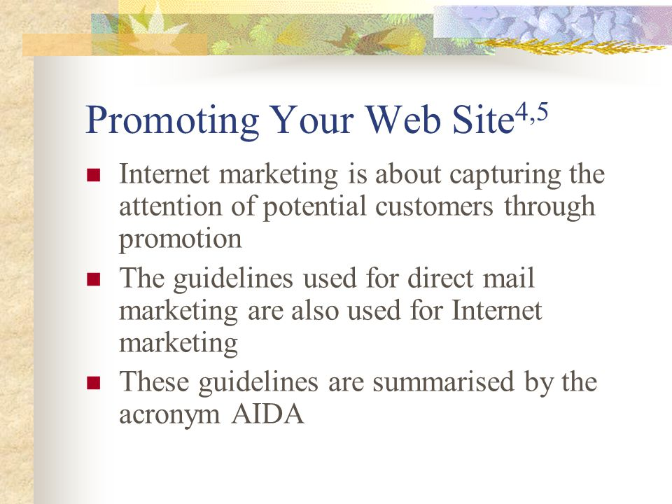 Promoting Your Web Site4,5