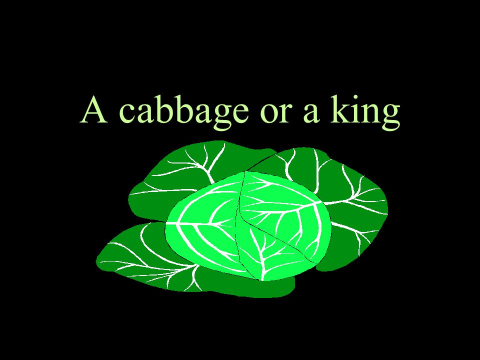 A cabbage or a king 23
