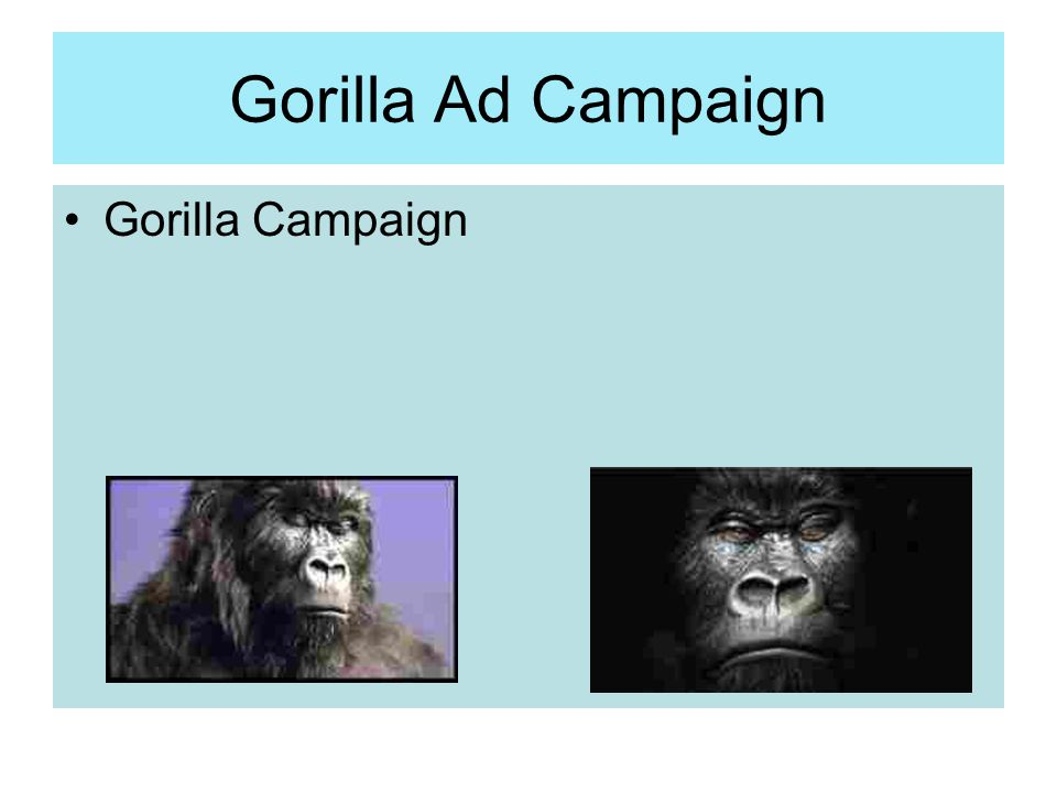 Gorilla Ad Campaign Gorilla Campaign