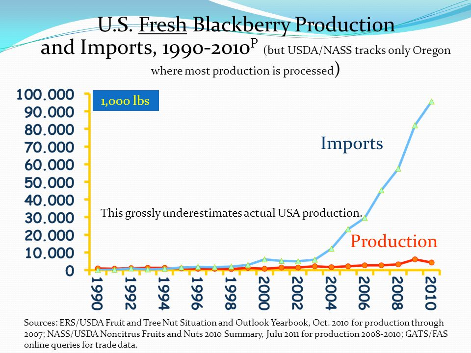 U.S. Fresh Blackberry Production and Imports, 1990-2010P (but USDA/NASS tracks only Oregon where most production is processed)