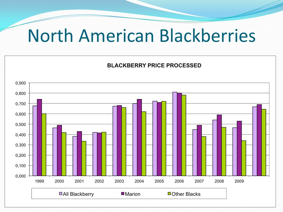 North American Blackberries