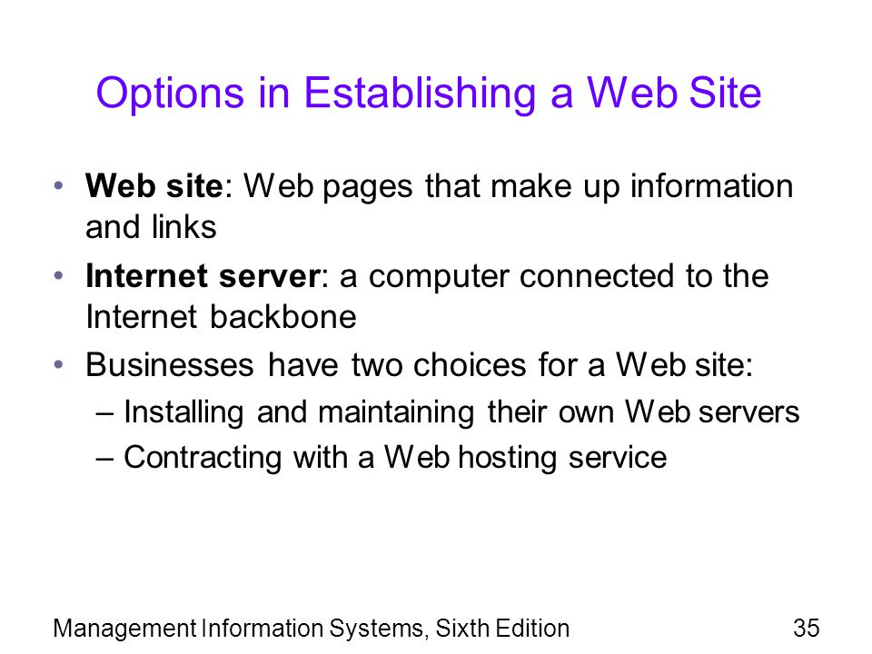 Options in Establishing a Web Site