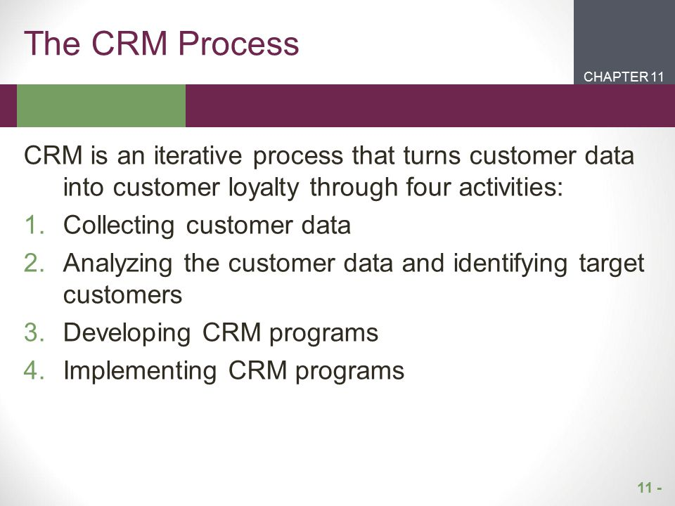 The CRM Process CHAPTER 11. CHAPTER 1. CHAPTER 2. CHAPTER 1.