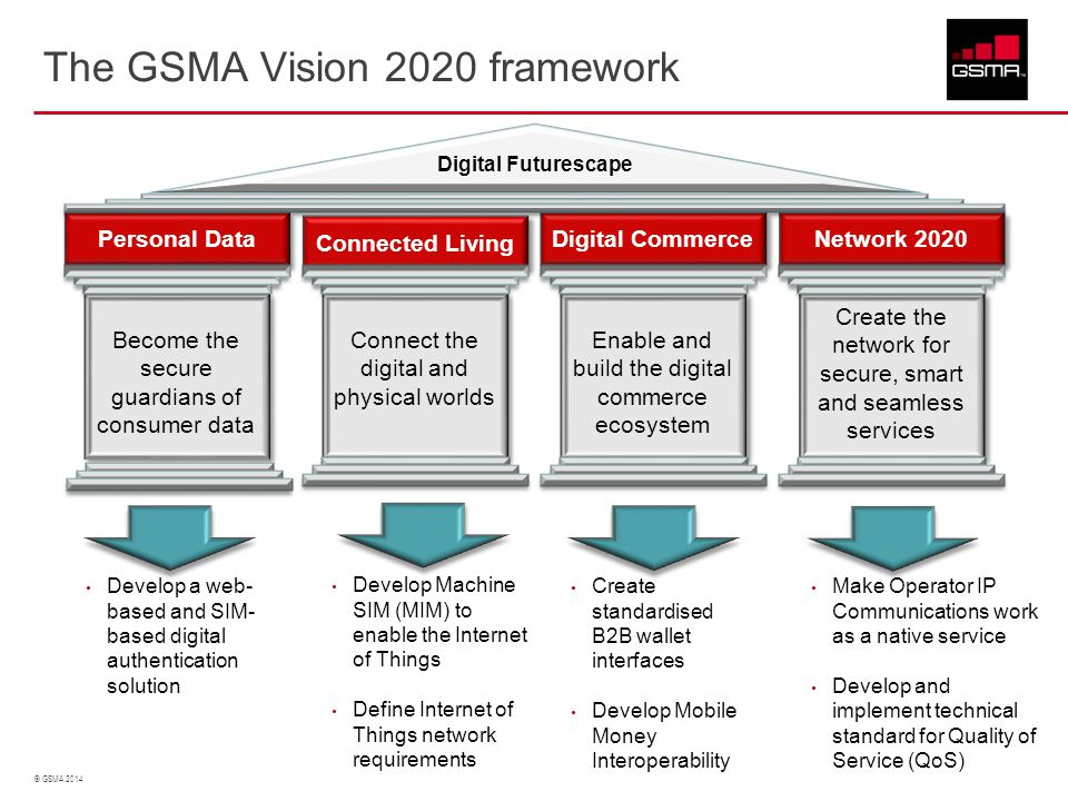 The GSMA Vision 2020 framework