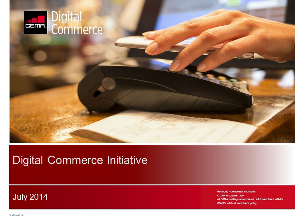 Digital Commerce Initiative