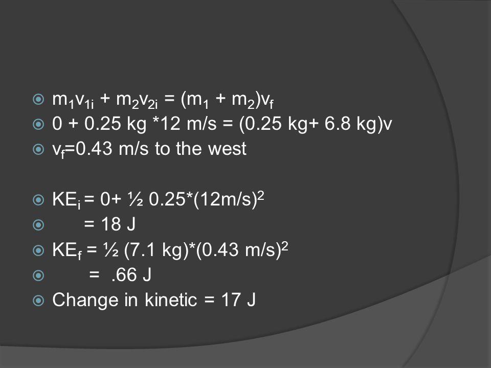 m1v1i + m2v2i = (m1 + m2)vf 0 + 0.25 kg *12 m/s = (0.25 kg+ 6.8 kg)v. vf=0.43 m/s to the west. KEi = 0+ ½ 0.25*(12m/s)2.