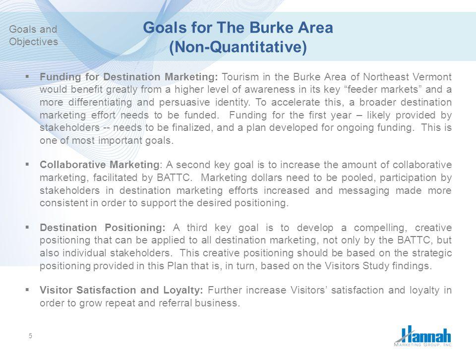 Goals for The Burke Area (Non-Quantitative)