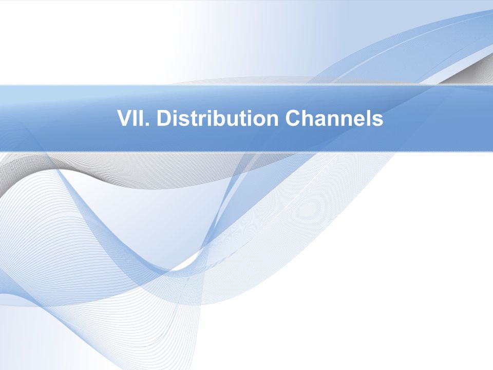 VII. Distribution Channels