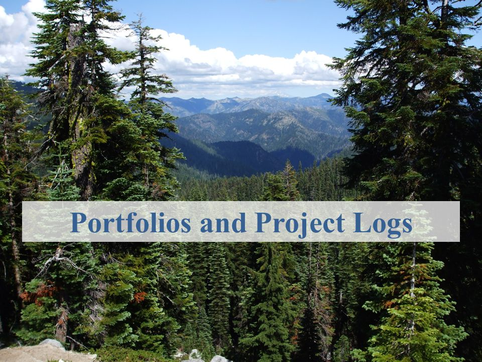 Portfolios and Project Logs
