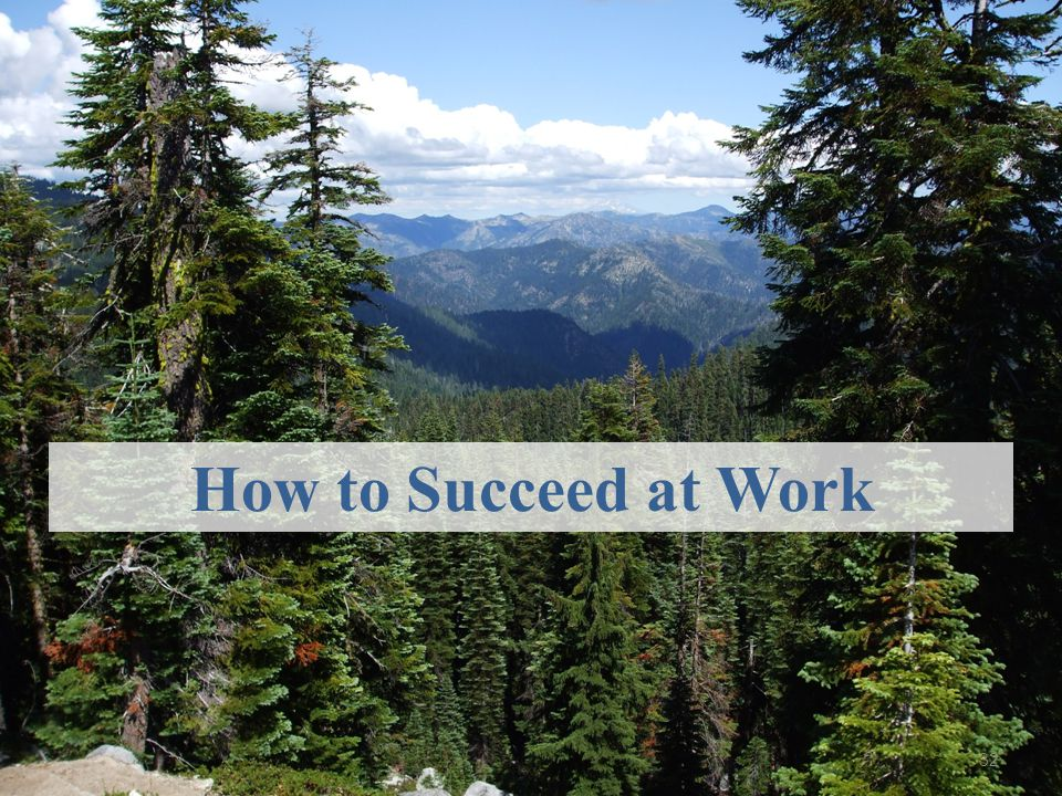 How to Succeed at Work