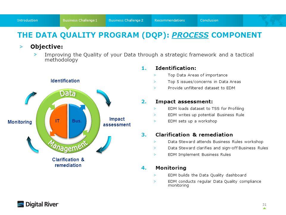 The Data Quality Program (DQP): Process component