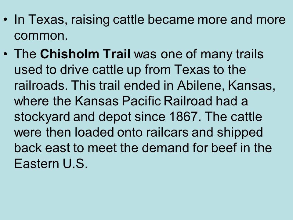 In Texas, raising cattle became more and more common.