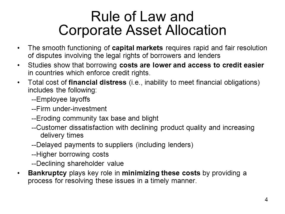 Rule of Law and Corporate Asset Allocation