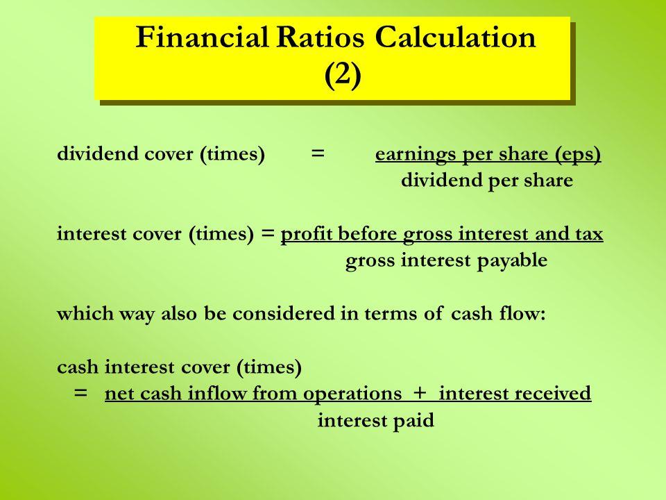 Financial Ratios Calculation (2)