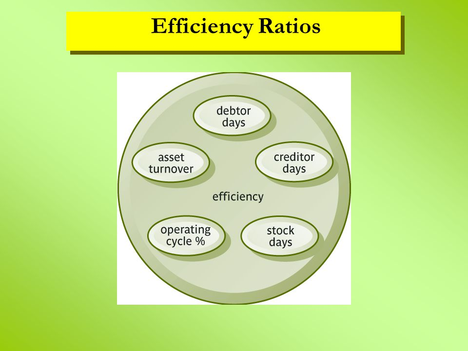 Efficiency Ratios