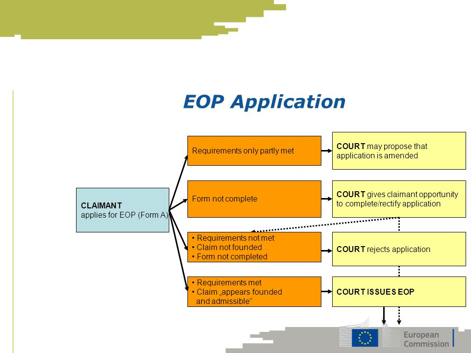 EOP Application COURT may propose that application is amended