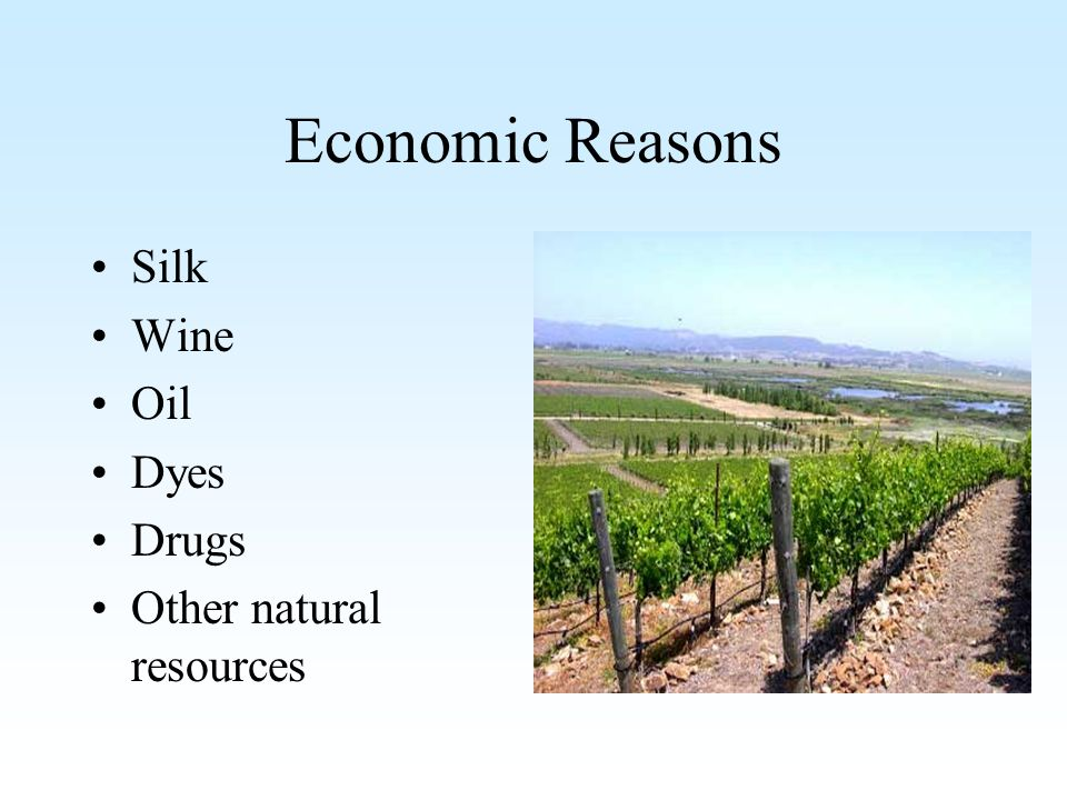 Economic Reasons Silk Wine Oil Dyes Drugs Other natural resources