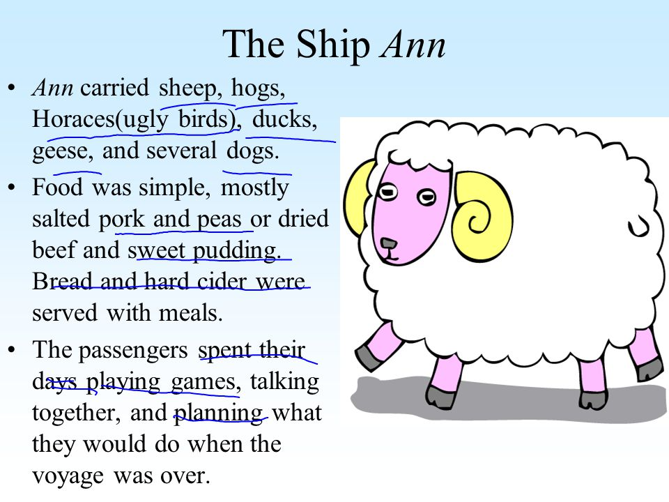The Ship Ann Ann carried sheep, hogs, Horaces(ugly birds), ducks, geese, and several dogs.