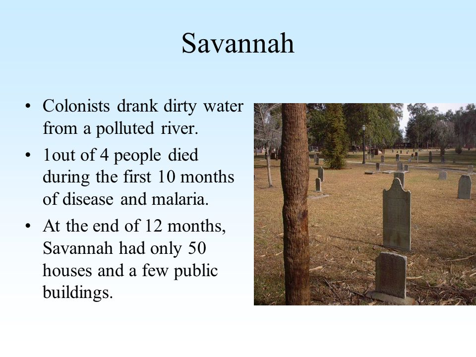Savannah Colonists drank dirty water from a polluted river.