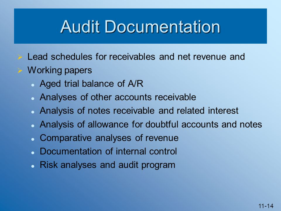 Audit Documentation Lead schedules for receivables and net revenue and