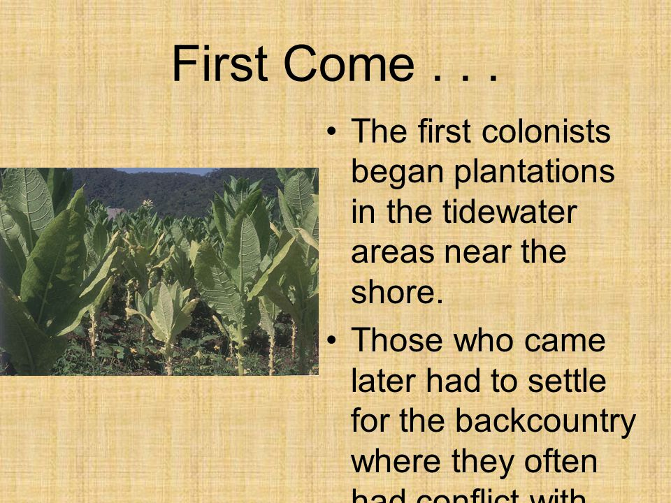 First Come . . . The first colonists began plantations in the tidewater areas near the shore.