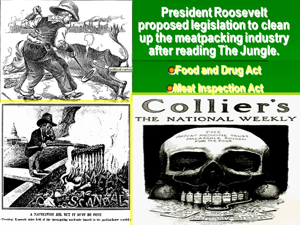 President Roosevelt proposed legislation to clean up the meatpacking industry after reading The Jungle.