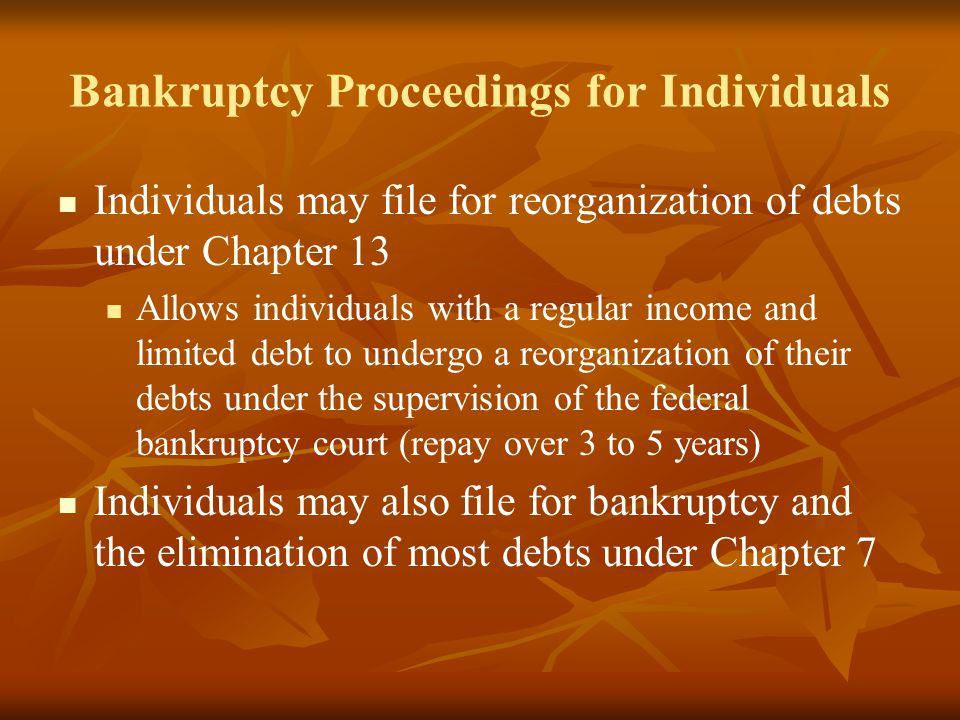 Bankruptcy Proceedings for Individuals