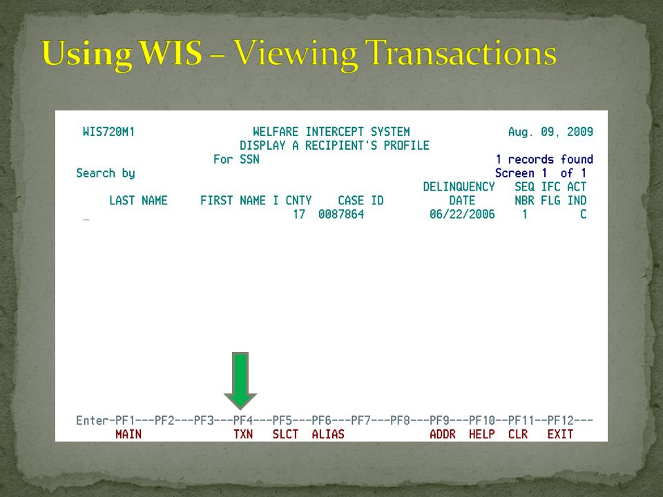 Using WIS – Viewing Transactions