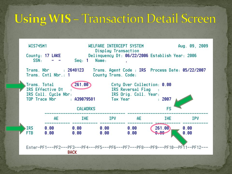 Using WIS – Transaction Detail Screen