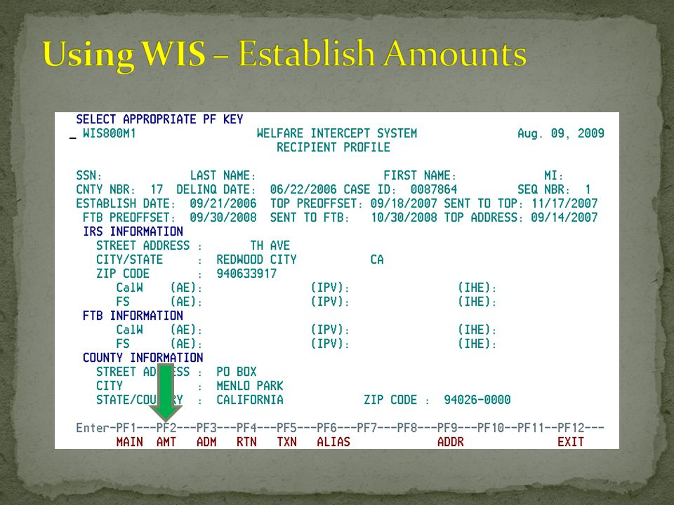 Using WIS – Establish Amounts
