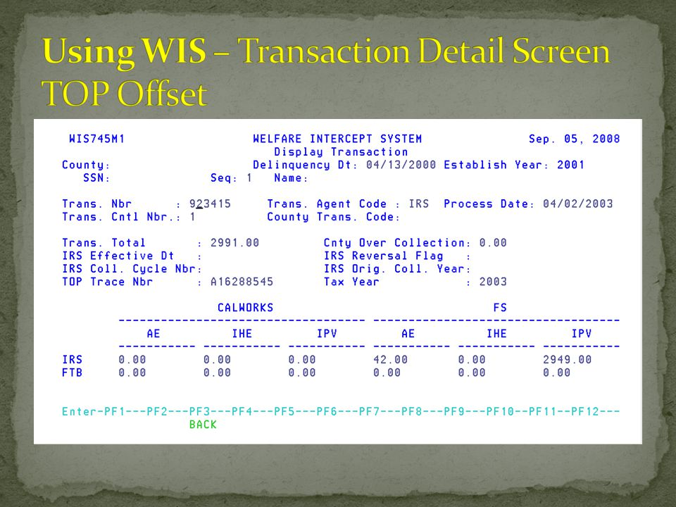 Using WIS – Transaction Detail Screen TOP Offset