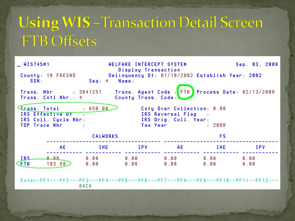 Using WIS –Transaction Detail Screen FTB Offsets