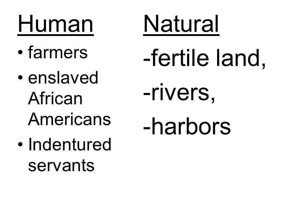 Human Natural -fertile land, -rivers, -harbors farmers
