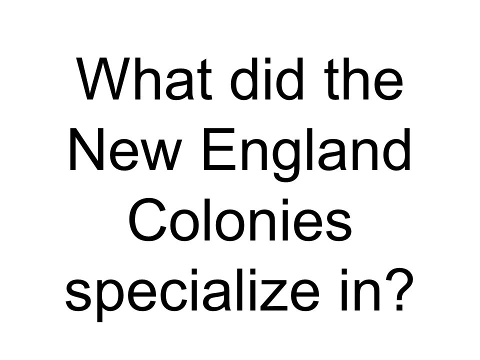 What did the New England Colonies specialize in