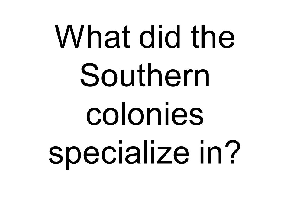 What did the Southern colonies specialize in