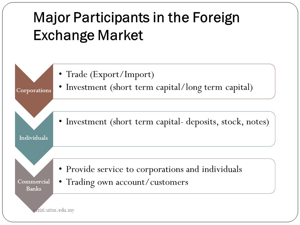 Major Participants in the Foreign Exchange Market
