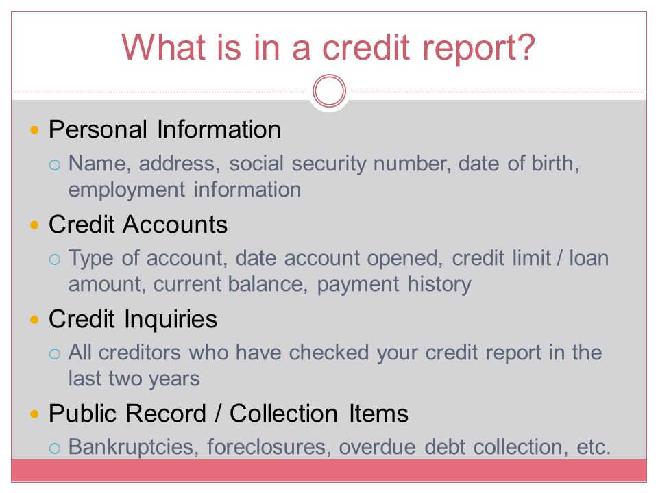 What is in a credit report