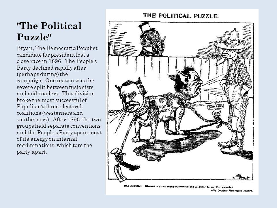 The Political Puzzle