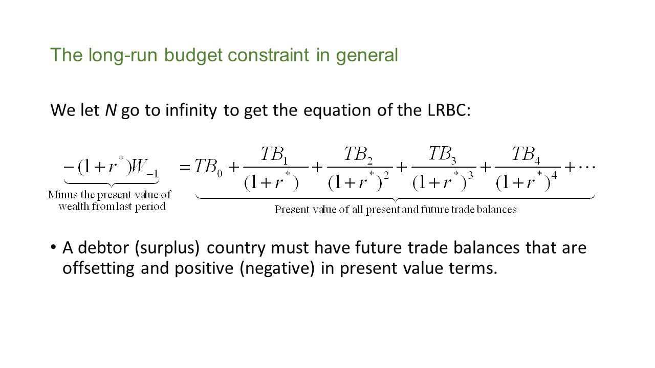 The long-run budget constraint in general