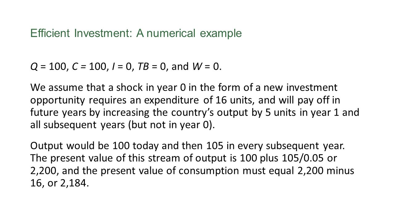 Efficient Investment: A numerical example