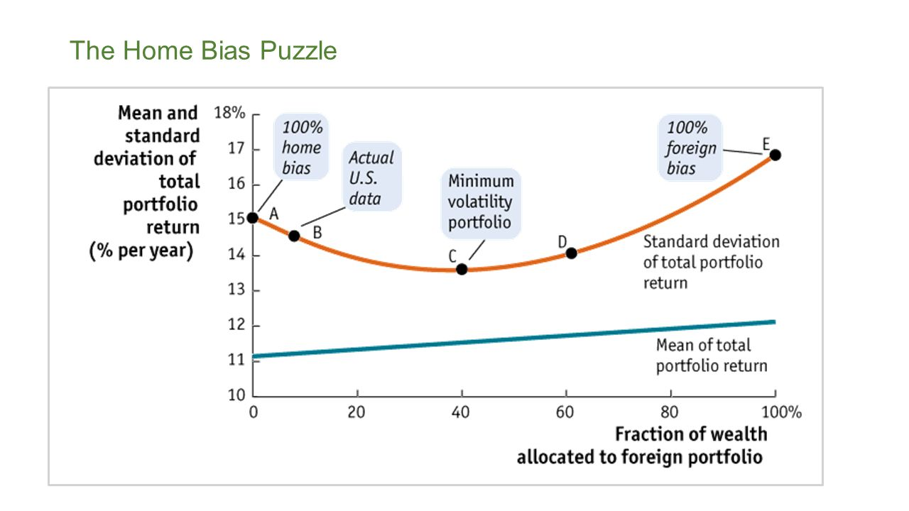 The Home Bias Puzzle