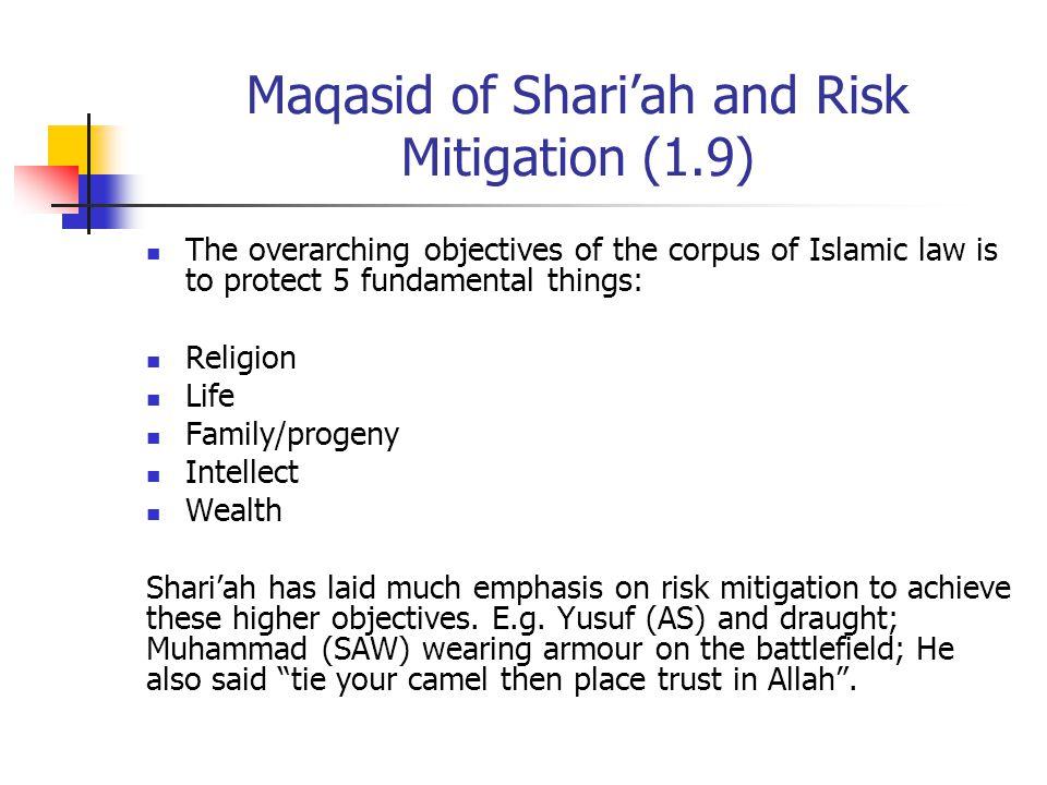 Maqasid of Shari'ah and Risk Mitigation (1.9)