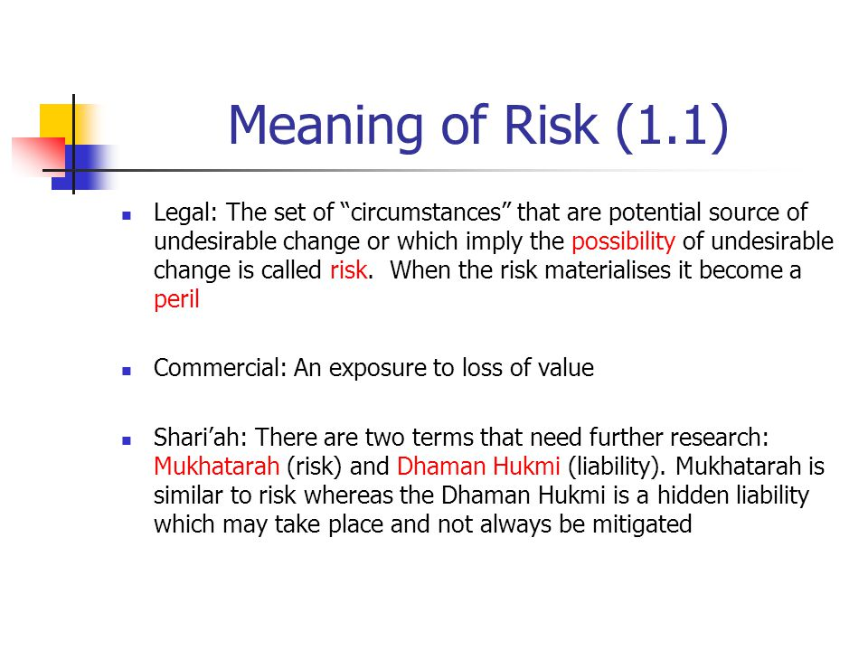 Meaning of Risk (1.1)