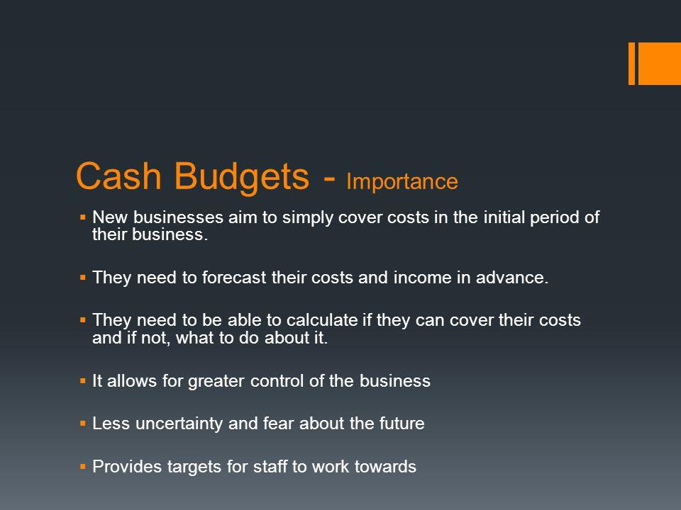 Cash Budgets - Importance